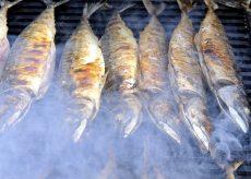 Traiteur de poisson à Quiberon